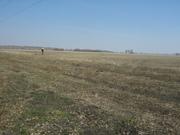 продам участок 15, 6 га поселок Красноярка Омского района